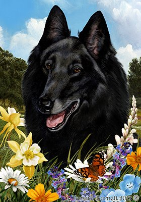 Cheap Belgian Sheepdog – Best of Breed Summer Flowers Large Flags