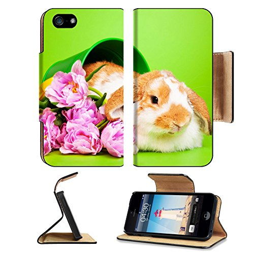 Metallic Bear Grass (Luxlady Premium Apple iPhone 5 iphone 5S Flip Pu Leather Wallet Case iPhone5 IMAGE ID: 34199057 Cute rabbit with flowers on green)