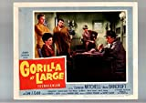 MOVIE POSTER: GORILLA AT LARGE-LOBBY