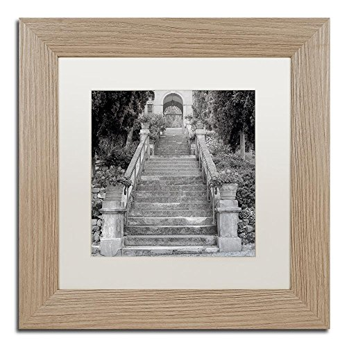 Liguria II by Alan Blaustein, White Matte, Birch Frame 11x11-Inch - Montreux Swivel