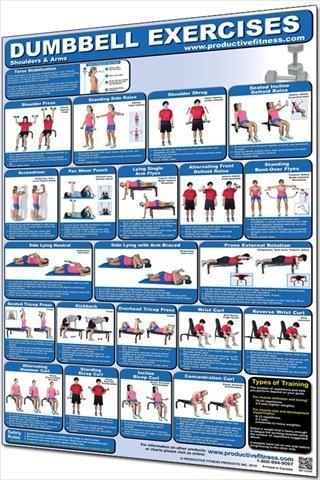 produktiv Fitness Produkte produktiv Fitness cdup Hantel Schultern und Arme-Papier