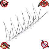 Haierc 5'' Stainless Steel Bird Spikes,Cat Repellent,Pigeon Spikes,Bird Spike-10 Pack (10 Feet)