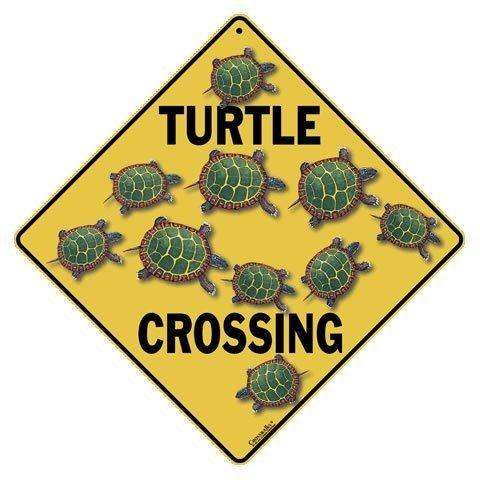 CROSSWALKS Turtle Crossing 12