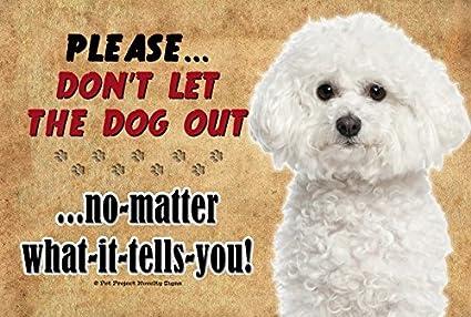 Amazon com: Bichon Frise - Don't let the Dog Out