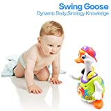 TOYK Dancing Hip Hop Goose Super Fun Toy with Music - Toys for girls and boys kids or toddlers