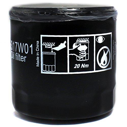 Amazon.com: Filtro de aceite Hengst H317W01 04E115561C ...