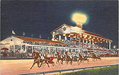 Night Trotting Races, Fairgrounds Trotting Track Louisville, Kentucky, KY, USA Old Vintage Horse Racing Postcard Post Card