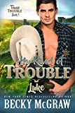 Image of My Kind of Trouble: Texas Trouble Series Book 1