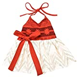 CHICTRY Toddler Girls Baby Moana Fancy Dress up Costume Princess Cotton Lace Birthday Party Outfits Orange 6-12 Months