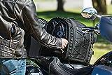 Kuryakyn 5284 Momentum Road Warrior Motorcycle