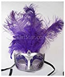 Largemouth Women's Feather Topped Masquerade Mask (Silver/Purple)
