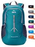Cheap Venture Pal 25L – Durable Packable Lightweight Travel Hiking Backpack Daypack Small Bag for Men Women Kids (Green)