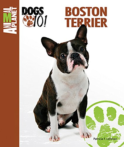 (Boston Terrier (Animal Planet Dogs 101))