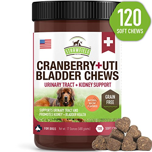 Kidney Stone Urinary Tract - Cranberry Supplement for Dogs -120 Grain Free Dog Treats - Cranberry Chews for Urinary Tract Infection Treatment UTI Relief Bladder Control Support UT Incontinence - D-Mannose + Organic Echinacea, USA