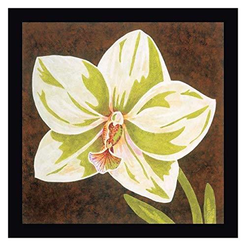 Surabaya Orchid Petites B by Judy Shelby - 23