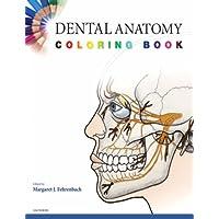 Amazon Best Sellers: Best Dental Anatomy & Physiology