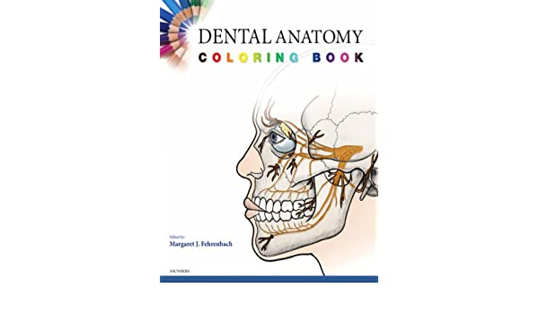 Dental Anatomy Coloring Book: Margaret J. Fehrenbach ...