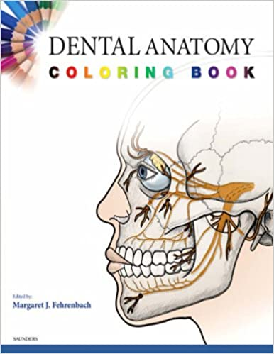 Dental Anatomy Coloring Book, 1e: Amazon.co.uk: SAUNDERS ...