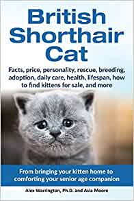 British Shorthair Cat From Bringing Your Kitten Home To Comforting Your Senior Age Beloved Companion Warrington Ph D Alex Moore Asia 9781999913571 Amazon Com Books