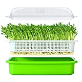 plant tray cover - Seed Sprouter Tray BPA Free PP Soil-Free Big Capacity Healthy Wheatgrass Grower 9.84 x 13.4 x 4.72inch with Cover
