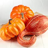 Factory Direct Craft Harvest Orange Artificial Gourd and Pumpkins | 3 Pieces