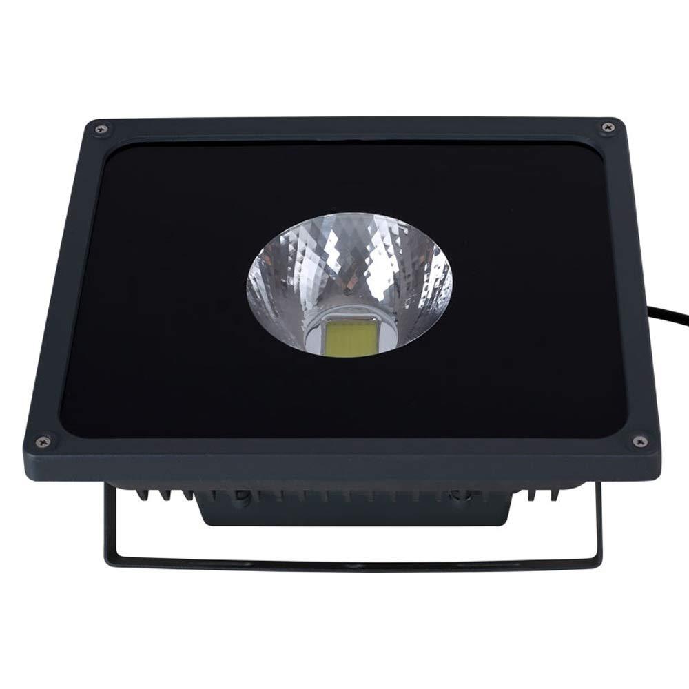 LED Flood Light 50W Impermeabile Luce per esterni Luce per esterni Luce per pubblicità Proiezione Spotlight (Colore   Cool bianca light)