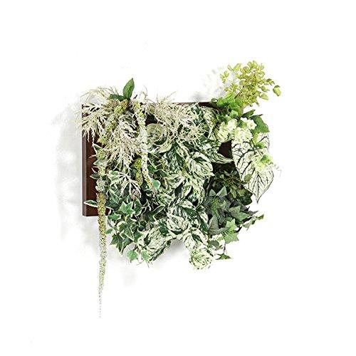 インテリアグリーンフレーム Botanical寄せ植え c.class2