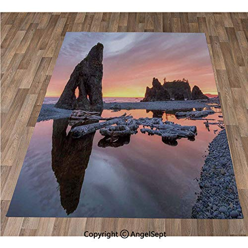Non-Slip Super Soft Rugs Cozy Kids Bedroom Living Room Carpet 24x36in,Sunset Theme Sea Stacks and Driftwood at Ruby Beach Digital Image,Orange and Grey Indoor/Outdoor Area Runners & Stair Rug Carpet