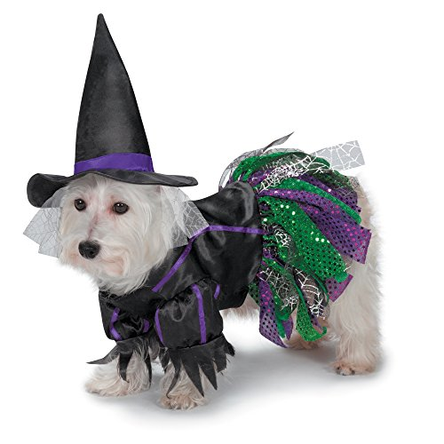 Zack & Zoey Scary Witch Costume for Dogs, -