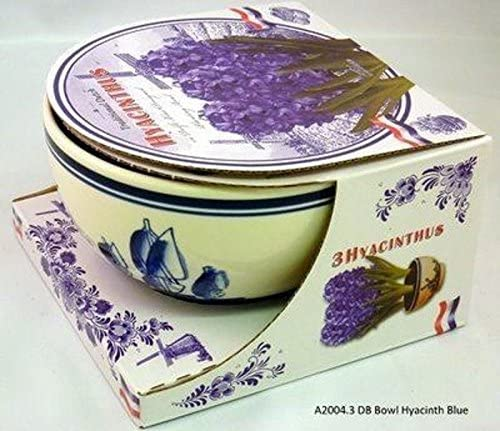 Pink Delft Bowl and Hyacinth Bulb Gift Pack Includes Bowl Bulbs and Compost