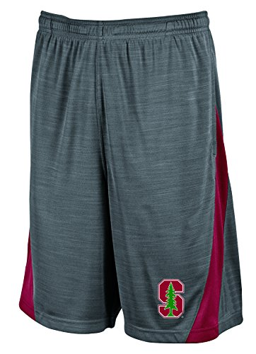 NCAA Stanford Cardinal Men's Boosted Stripe Color Blocked Training Shorts, X-Large, Gray (Mens Stanford Shorts)