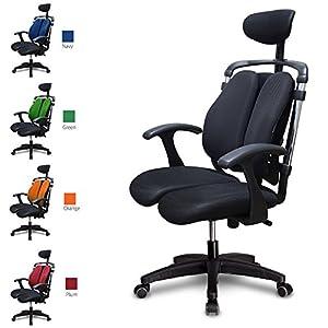 ハラチェア HARA CHAIR ニーチェK オフィスチェア ワーキングチェア ハラチェアー 腰痛軽減 事務椅子 (ブラック)