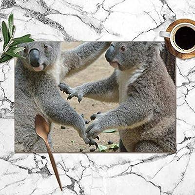 Compra Juego de manteles Individuales de 6, Dos Koalas sentados en ...