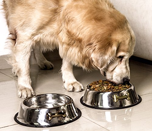 Gpet-Dog-Bowl-32-Ounce-Stainless-Steel-With-Rubber-Base-that-Bowls-Wont-Slip-Perfect-for-Puppies-and-Middle-size-Dogs-set-of-2