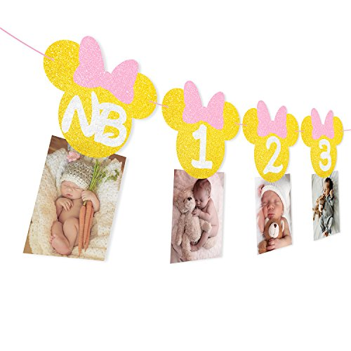 Pink and Gold Glitter Minnie 12 Months Photo Banner Girls 1st Birthday Party Handmade Decorations