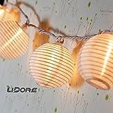 LIDORE White Chinese Mini Nylon Lantern String Light for Wedding, Party, Patio, Christmas Decoration. 10 Globes.