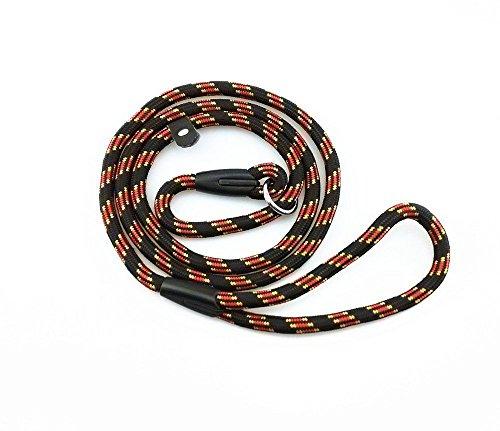 Dog Whisperer Collar Reviews
