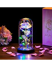 Belle en het beest roos in glazen koepel LED-verlichting eeuwige kristal roos bloemen cadeau betoverd voor altijd roos romantisch verjaardagscadeau voor haar voor jubileum Valentijnsdag bruiloft vriendin vrouw dames