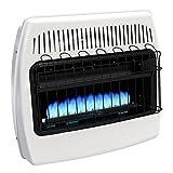 Dyna-Glo Blue Flame Vent Free Garage Heater (BF30DTDG-2 30,000 BTU')