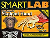 You Control It: Skeletal Hand (SmartLAB)