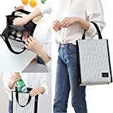 Insulated Cooler Lunch Tote Bag Ladies Picnic Bag Trendy Zippered School Cooler Bag for Women