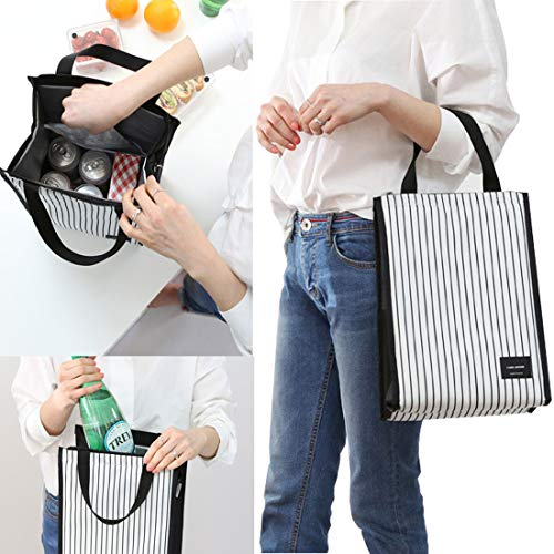 insulated cooler lunch tote bag