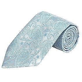PilotMan Mens Tie High Grade Paisley Ties Necktie Formal Silk Tie