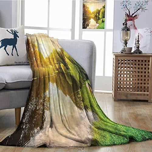 (Zmcongz Throw Blanket Lake House Decor Collection Sunset Over Calm River Grass Willow Trees Grass Rocks Reflection Light Clouds All Season Blanket W60 xL80 Green Blue White)