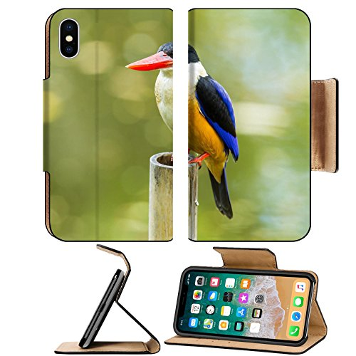 Luxlady Premium Apple iPhone X Flip Pu Leather Wallet Case IMAGE ID: 24179763 Front side of Black capped Kingfisher Halcyon pileata on bamboo in - Boxes Days Halcyon