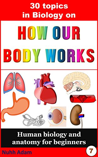 Biology 30 Topics In Biology On How Our Body Works Human Antomy