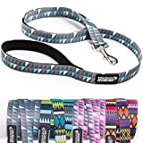 Friends Forever Durable Nylon Dog Leashes for Small Dogs to Large Dogs, Pattern Cat Leashes for Walking - Puppy Leash 5 Feet Long for Dogs & Cats, Geometric Grey