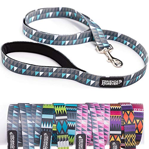Friends Forever Durable Nylon Dog Leashes for Small Dogs to Large Dogs, Pattern Cat Leashes for Walking - Puppy Leash 5 Feet Long for Dogs & Cats, Geometric -