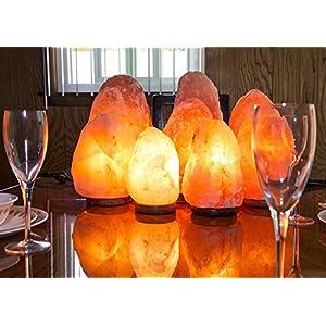 2 Natural Himalayan Pink Salt Lamp w/Bulb & Cord
