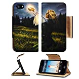 MSD Premium Apple iPhone 5 iphone 5S Flip Pu Leather Wallet Case beautiful painting oil on canvas of a mystical young woman in green emerald medieval iPhone5 IMAGE 35819539